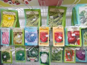 Magazin - gardenshop-constanta.ro 003