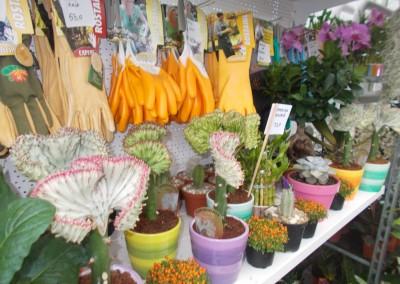 Magazin - gardenshop-constanta.ro 004